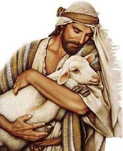 jesus looking at sheep