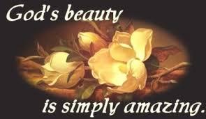 God's Beauty is Amazing