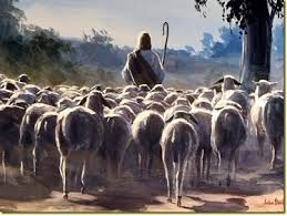 Sheep Following Jesus
