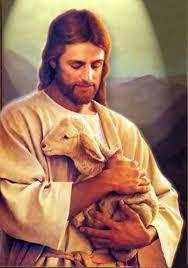 Jesus' Loving Sheep