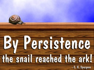 By Persistence The Snail Got THere