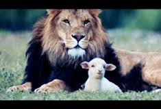 Lion With the Lamb