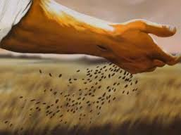 God's Hand Sowing Seeds