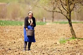 Woman sowing seeds