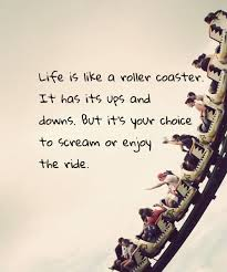 Roller Coaster of Choice