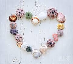 Heart of Seashells