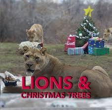 Lions and Christmas Trees